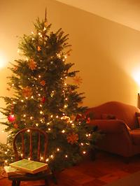 tree2006.jpg