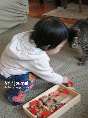 baby_cat00.jpg