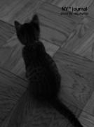 goemon_noir02.jpg
